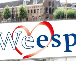 Logo we love weesp